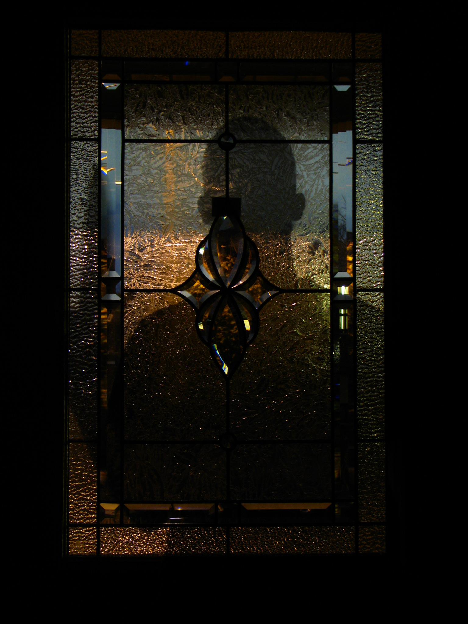 Glass Door - TPS Electric Gates